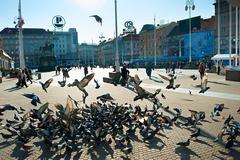 Ban Jelacic Square, Zagreb - stock photo