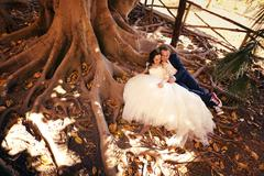 Bride and groom sitting on roots of tree - stock photo