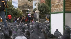 Pigeons in Murillo Square in La Paz, Bolivia (4) Stock Footage
