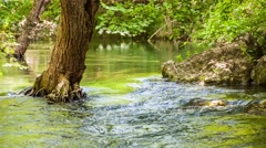 Mountain River Slowing Moving Among Greenery And Stones Stock Footage