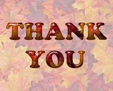 Thank You in Fall Leaves Stock Illustration