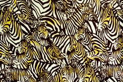 Texture fabric of Many zebra herd for background - stock photo