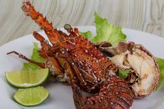 Spiny lobster - stock photo