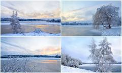Collage of winter landscapes with trees in hoarfrost - stock photo