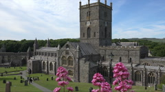 Valerian flowers, St Davids Cathedral, Pembrokeshire, Wales Stock Footage