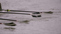 Rowing Team Oars Close-Up 11 Stock Footage
