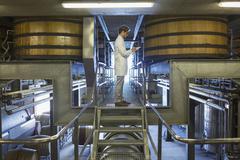 Vintner in lab coat on platform in winery cellar Stock Photos
