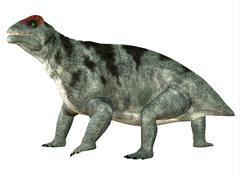 Stock Illustration of Moschops Side Profile