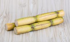 Stock Photo of Sugar reed