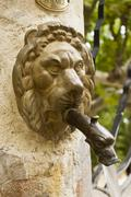 Metal lion head spout - stock photo