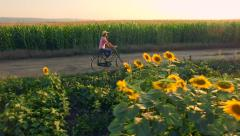 Beautiful Farm Girl Riding A Bicycle Through Summer Road Sunflower Field Nature - stock footage