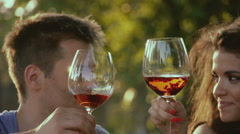 Couple on picnic, outdoor. Drinking red vine, kissing Stock Footage