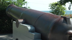 Commemorative cannon - stock footage