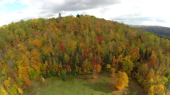 Aerial view over mountain autumn forest Stock Footage