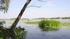 The Dnieper river in Kiev Stock Footage