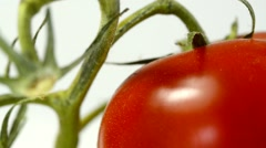 Ripe tomato on a turn table Stock Footage