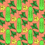 Sketch cucumbers  in vintage style - stock illustration
