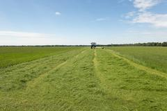 Pasture mowing with blue tractor - stock photo