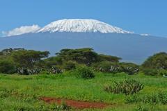 Kilimanjaro in Kenya Stock Photos