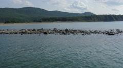 Outfall Ropotamo River Stock Footage