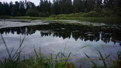 Ummer lake is darker foggy timelapse 4K Stock Footage