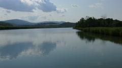 Water backlit reserve Ropotamo River Bulgaria Stock Footage