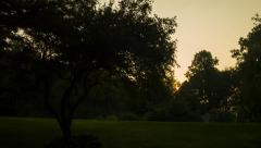 Golden Sunrise with trees, suburban rural setting, location Stock Footage