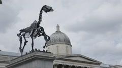 Trafalgar Square's Fourth Plinth Horse Skeleton Stock Footage