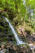 Waterfall in the Carpathian mountains Stock Photos