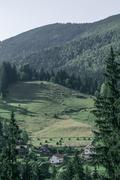 Stock Photo of summer landscape in Carpathians