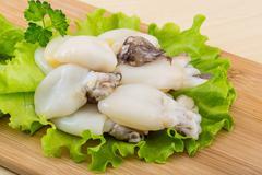Raw cuttlefish - stock photo