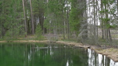 Stock Video Footage of A big water spring surrounded with trees