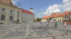 Tourists feeding the pigeons in the Large Square, Sibiu Stock Footage