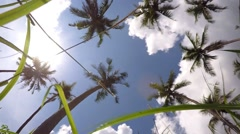 Travel, Summer Holidays and Vacation, Nature Concept Stock Footage