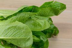 Romano salad - stock photo