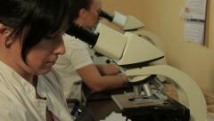 Pathologists analyzing tissue sample with microscope in the laboratory, tilt up. Stock Footage