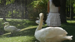 Little Girl Kid in White Dress is Walking at Green Park at Swan Lake White Stock Footage