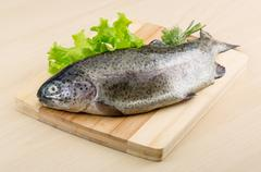 Stock Photo of Raw fresh trout