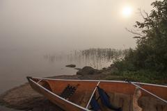 Wilderness Lake in a foggy summer morning - stock photo