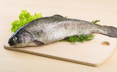Raw fresh trout - stock photo