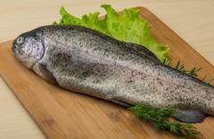 Raw fresh trout Stock Photos