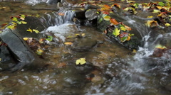 Autumn waterfall with yellow leaves Stock Footage