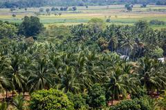 Neighborhood of Kerala - stock photo