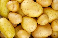 Yellow Potatoes Background Stock Photos