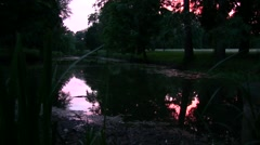 lake in the evening in the park, beautiful reflection of sunset in the water - stock footage