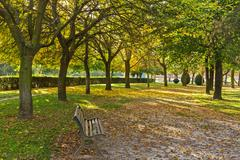 Autumn in the Park - - stock photo