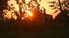 Sunset. Rural landscape backlit by sun Stock Footage