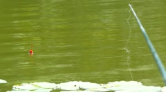 Fishing Pole, bobber floating in lake Stock Footage