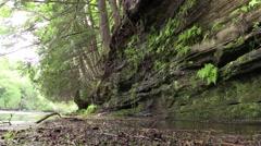 Rock wall along Tahquamenon River Michigan Stock Footage