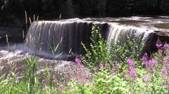 Upper waterfall along Tahquamenon River Michigan nature Stock Footage